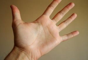 Handfläche lebenslinie Grundlagen der